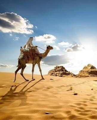https://mediteranatour.ro/wp-content/uploads/2012/02/Vacante-2021-Egipt-Sejur-Egipt-Early-Booking-Egipt-Oferte-Cazare-Egipt-Charter-Egipt-Despre-Egipt-Mediterana-Tour.jpg