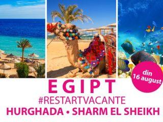 vacante sharm el sheikh, oferte sharm el sheikh, vacante charter egypt, egipt