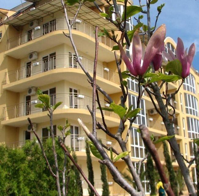 https://mediteranatour.ro/wp-content/uploads/2020/03/reprezentativa-oferta-joya-park-hotel-nisipurile-de-aur-rezerva-hotelul-joya-din-Bulgaria.-Rezervari-Bulgaria-2--650x640.jpg